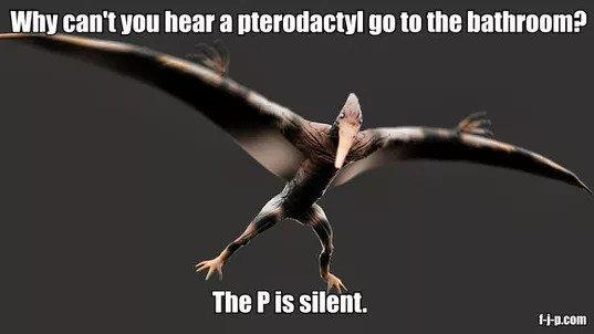 A Flying Pterodactyl Meme