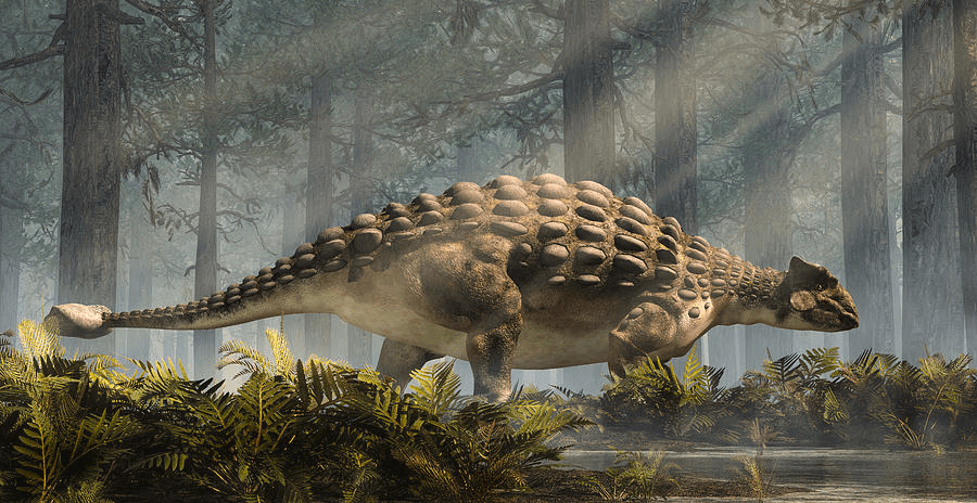 A Long Ankylosaurus in the Forest with Some Green Plants
