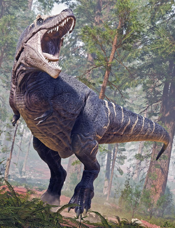 A Roaring Tyrannosaurus Rex in the Forest