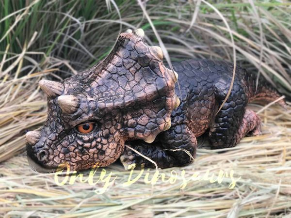 brown baby Triceratops remote-controlled puppet
