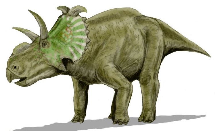 graphic art of a brown dinosaur with horns and a green frill on its head