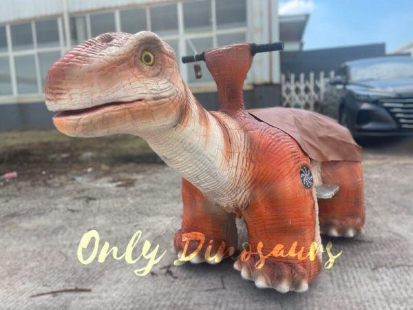 a cute orange baby dinosaur ride on the ground