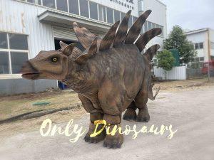 Big Two-person Stegosaurus Dinosaur Costume for Sale