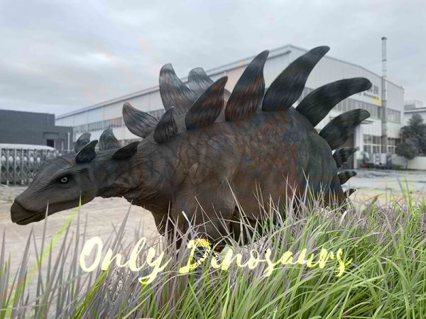 Stegosaurus behind glass