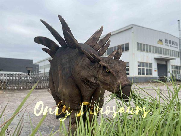 Huge Stegosaurus