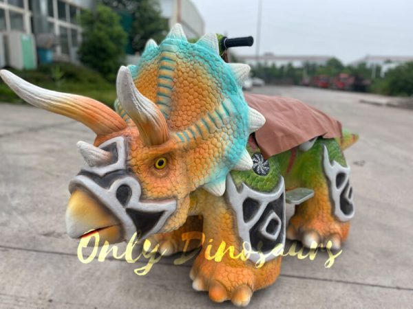 A Colorful Armored Triceratops on the Ground