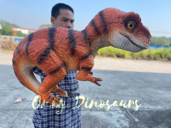 A Man is Holding an Oragne Baby T-Rex