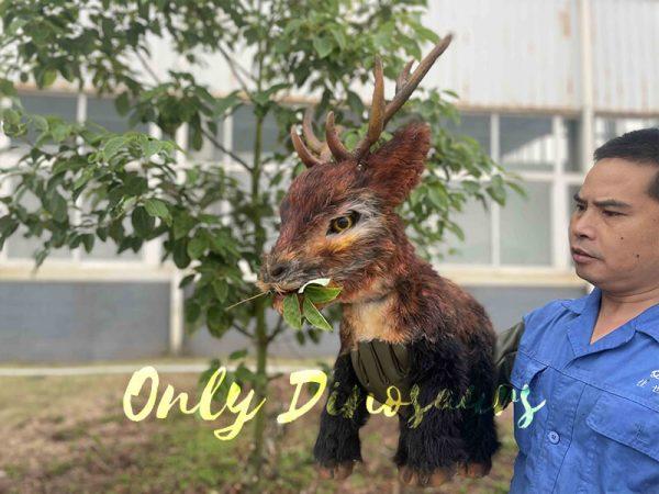 a reindeer eating leaf