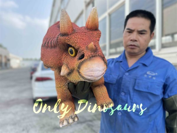 a man with the triceratops