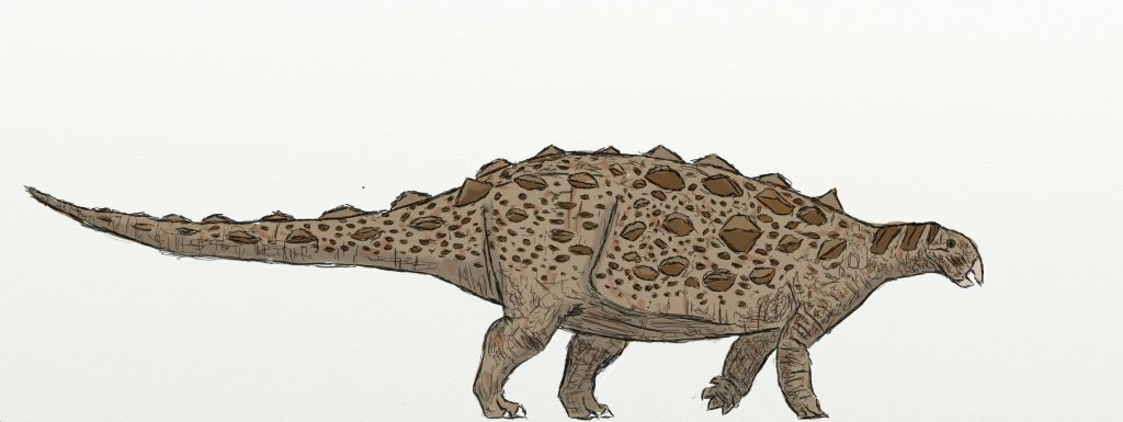 illustration of a brown dinosaur with small triangle knobs on its body