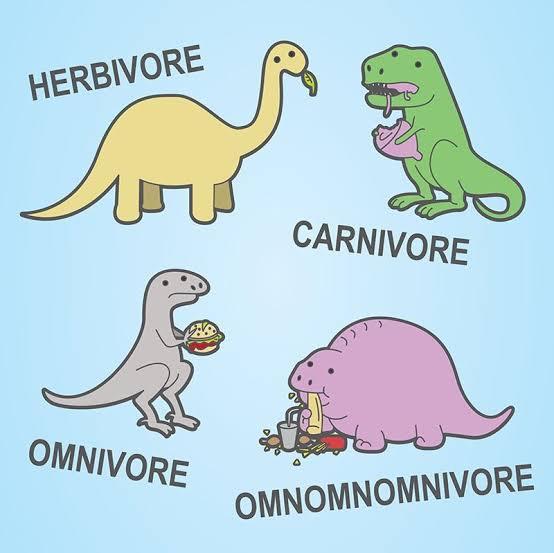 Herbivore Carnivore Omnivore Omnonivore with Different Colors