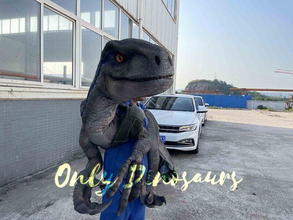 A blue velociraptor shoulder puppet before car
