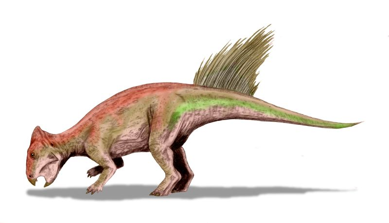 small orange dinosaur with a parrot-like beak and spiny projections on its tail