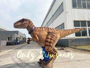Lifelike Dino Raptor Costume for Show