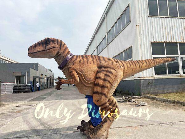 Lifelike Dino Raptor Costume for Show Cover