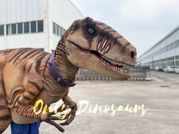 Lifelike Dino Raptor Costume for Show Part1