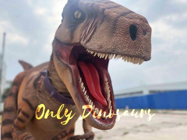 Lifelike Dino Raptor Costume for Show Part3