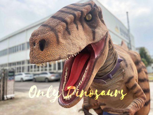 Lifelike Dino Raptor Costume for Show Part4
