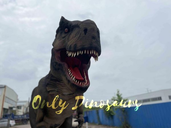 Realistic T-Rex Costume with Stilts Part3