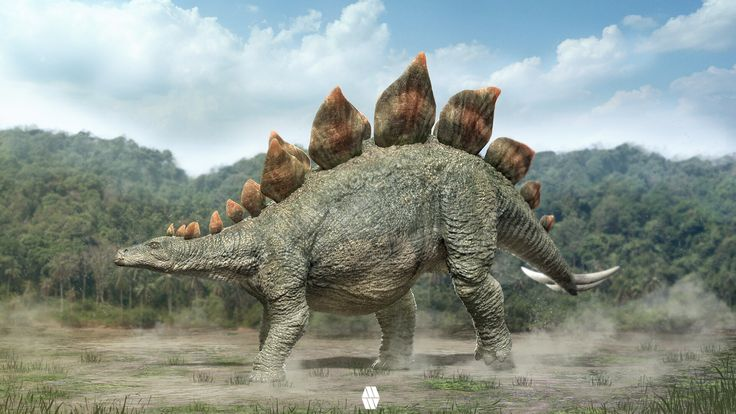 Stegosaurus with a Forest Bcakground