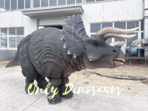 Two-person Jurassic Triceratops Costume for Sale