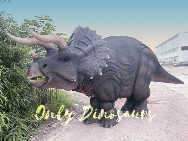 The Triceratops Before the Bush