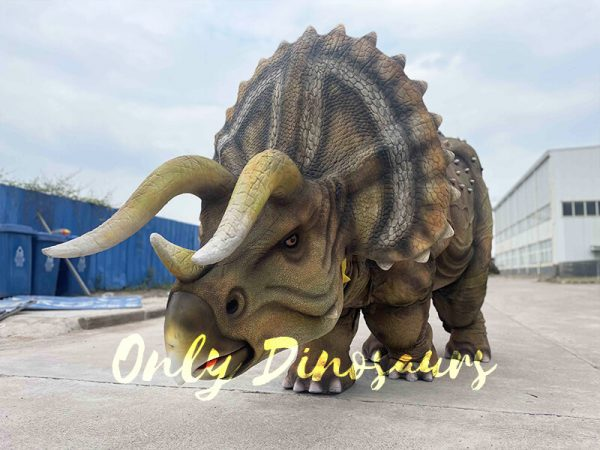 Realistic Triceratops