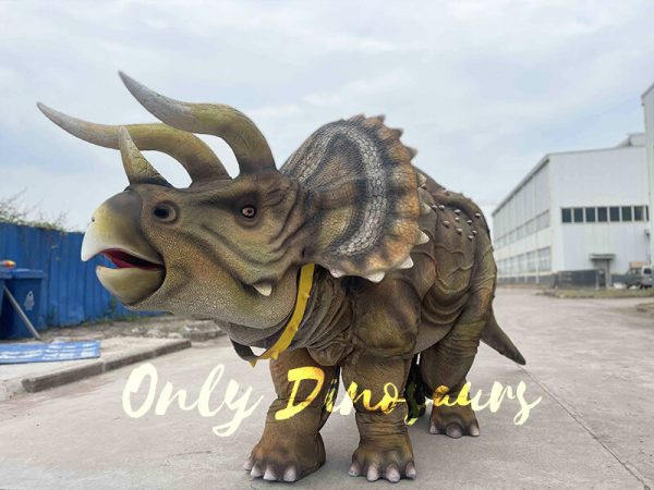 Onlydinosaurs Triceratops Costume Product