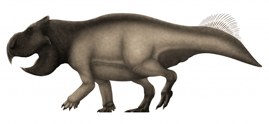 graphic art of a gray dinosaur with a deep beak and short head frill