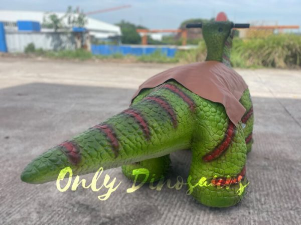 The Back of a Green Baby Dinosaur on the Ground