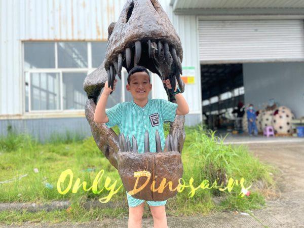 A Happy Kid in a Dinosaur Skull Fossil