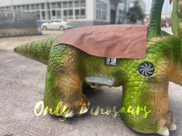 the back or a green baby dinosaur ride on the ground