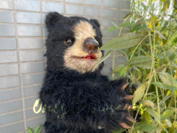 a black bear cub puppet beside green plants