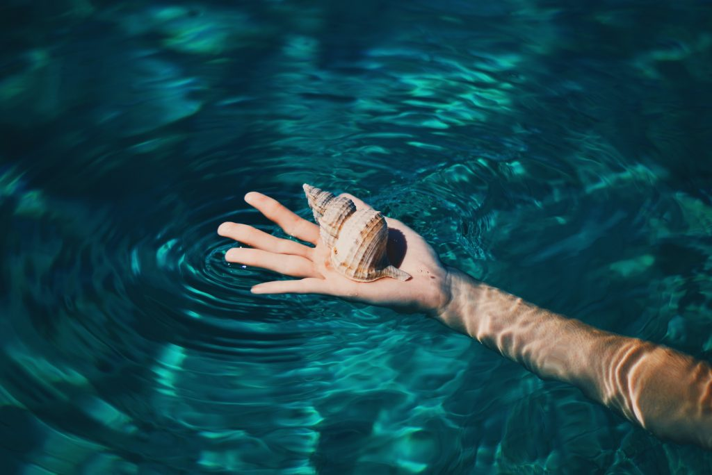 a hand holding a seashell in the water
