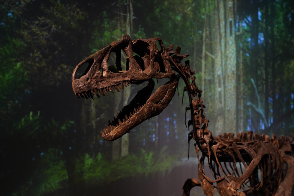 brown T. rex skeleton with a forest background