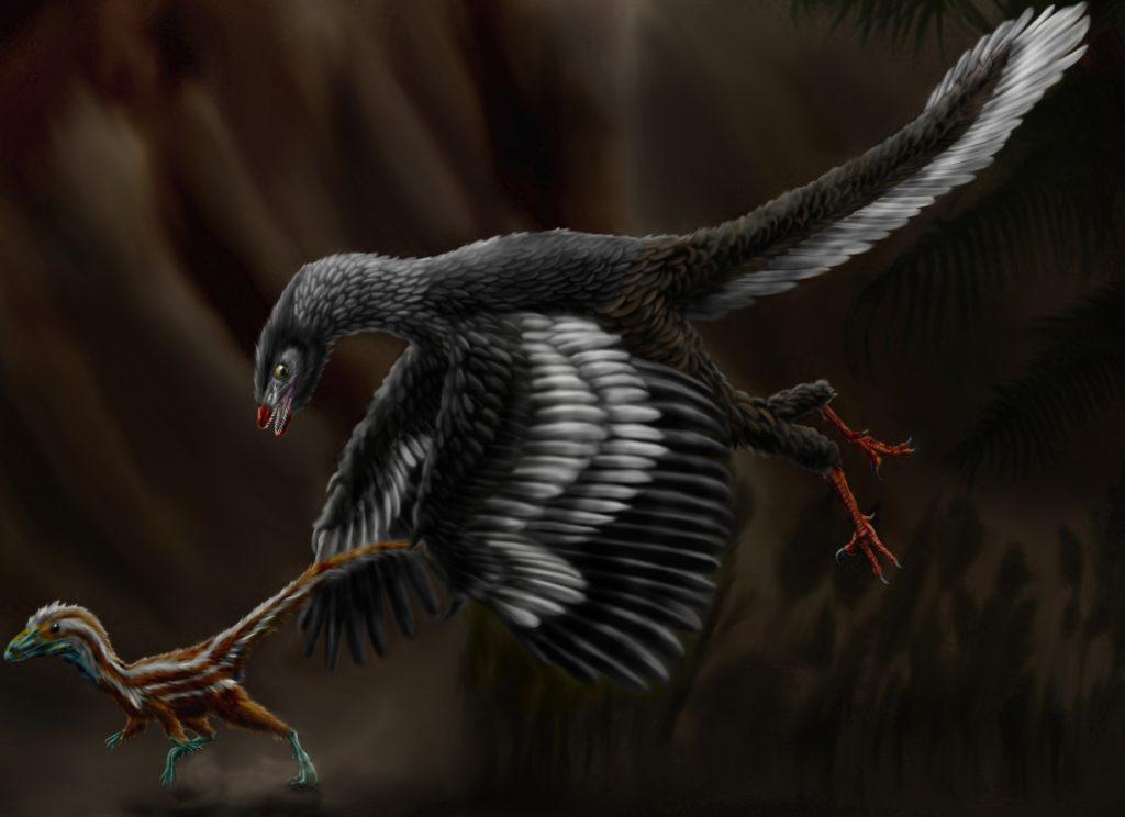 illustration of a black bird-like dinosaur catching a small dinosaur