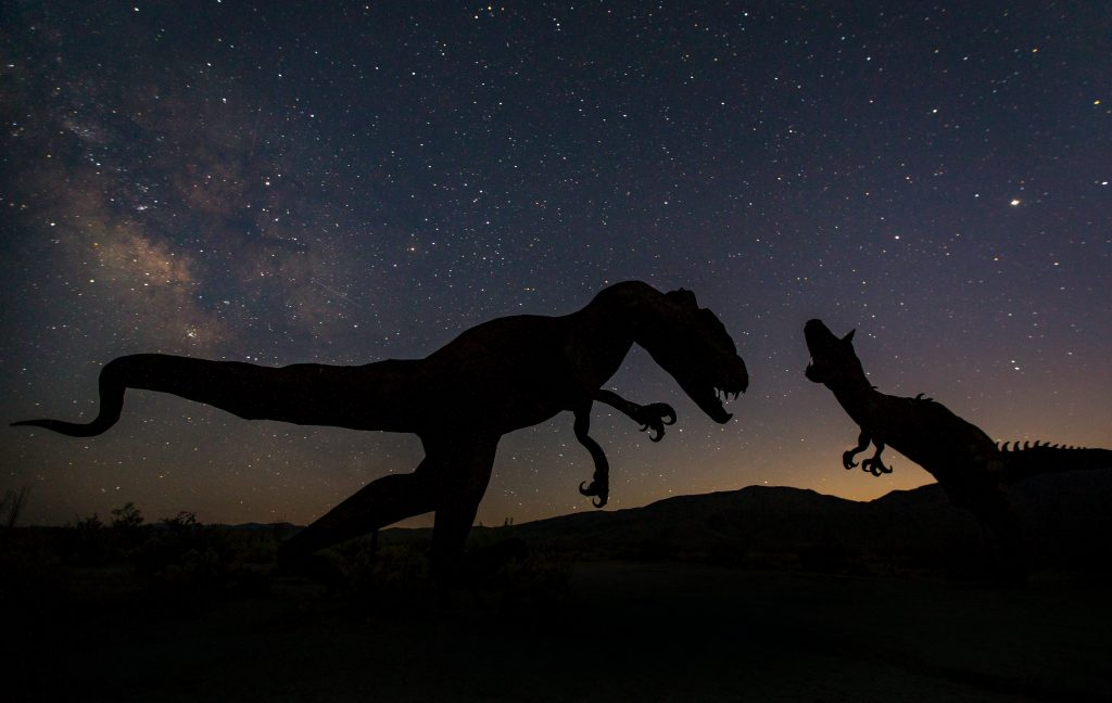 silhouettes of dinosaur statues with a nightime background