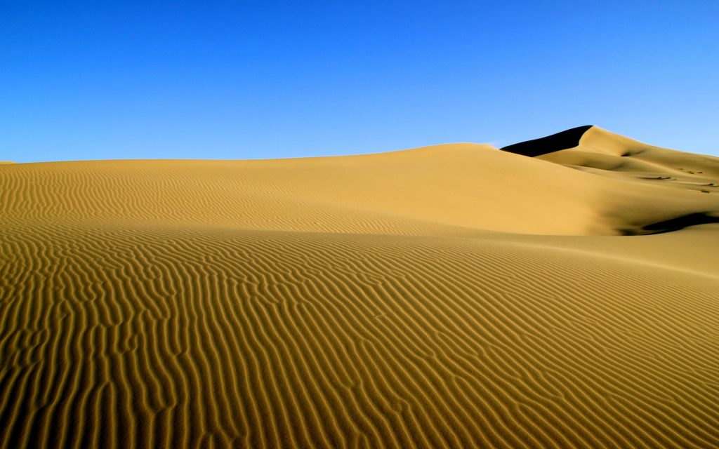 yellow sand in a large Mongolian desert