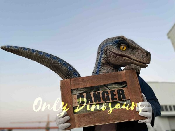 Adorable Crate Raptor Dinosaur Puppet for Kids1