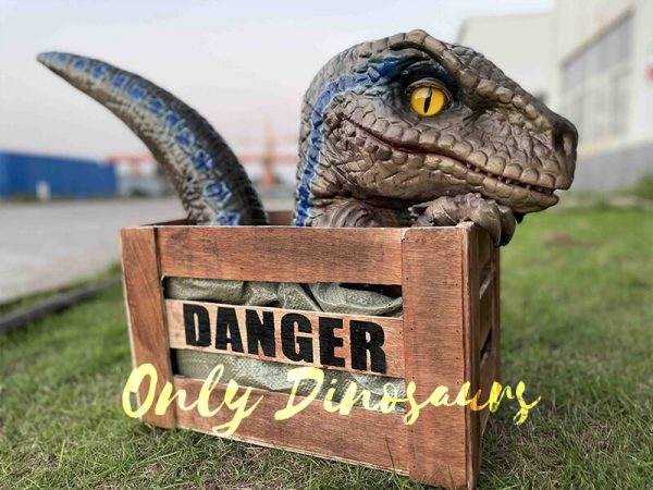 Adorable Crate Raptor Dinosaur Puppet for Kids3