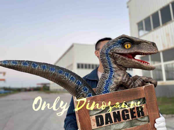 Adorable Crate Raptor Dinosaur Puppet for Kids5