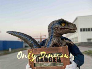 Adorable Crate Raptor Dinosaur Puppet for Kids