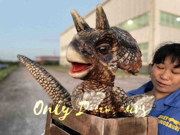 Crate Baby Triceratops Dino Puppet for Sale2