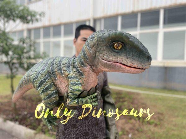Cute Green Baby Raptor Dino Puppet1 1