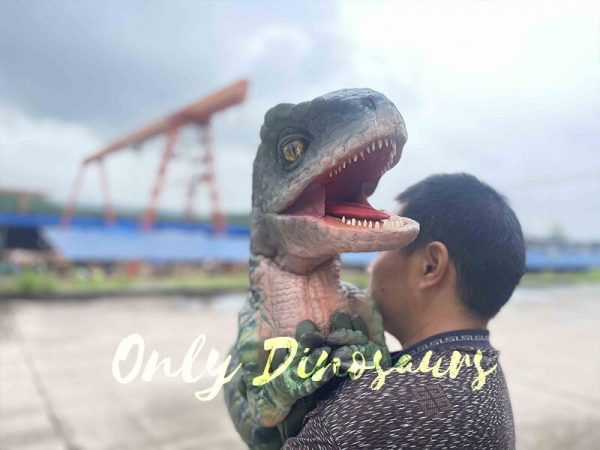 Cute Green Baby Raptor Dino Puppet2 3