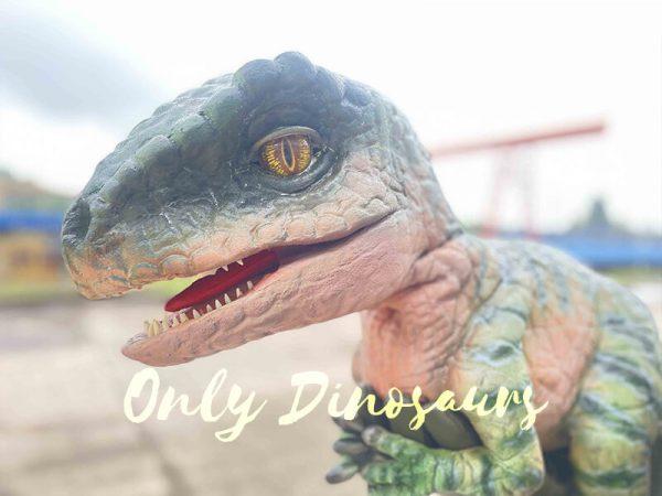 Cute Green Baby Raptor Dino Puppet4 5
