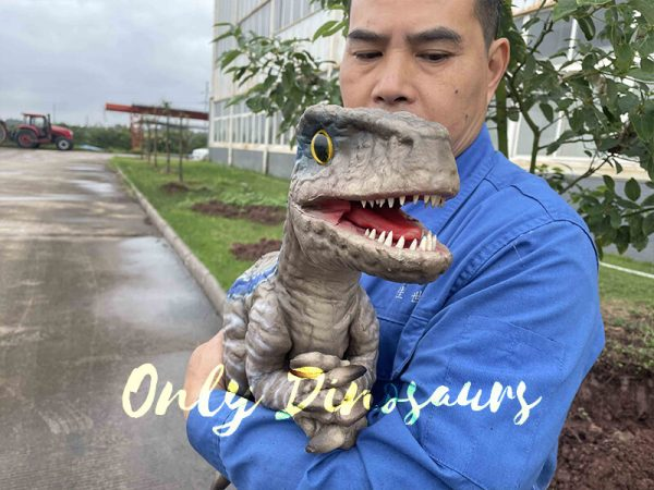 Cute Mini Baby Raptor Hand Puppet For Kids3