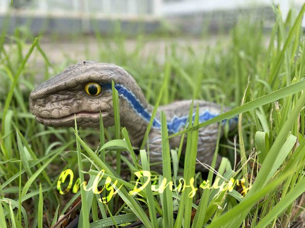 Cute Mini Baby Raptor Hand Puppet For Kids4