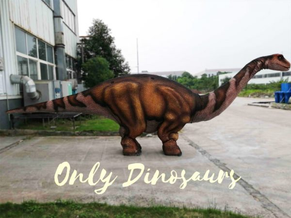 Four Legs Realistic Big Brontosaurus Dino Costume1