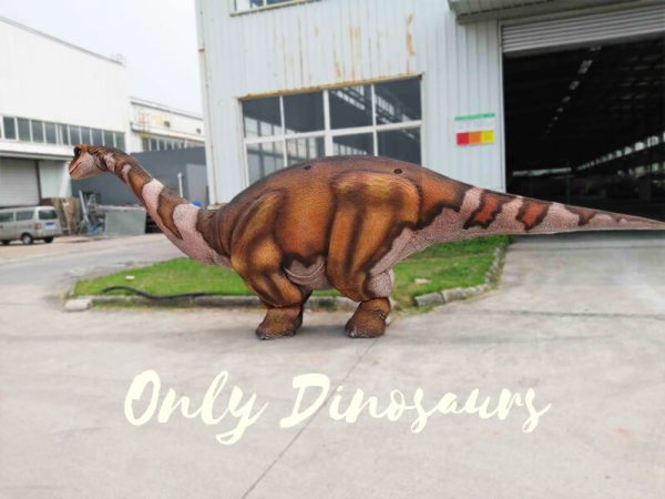 Four Legs Realistic Big Brontosaurus Dino Costume2